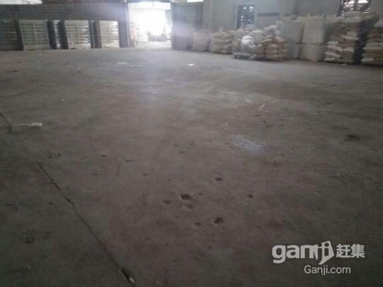 龙岗中心城原房东钢构厂房,1700平方8米高-图(4)