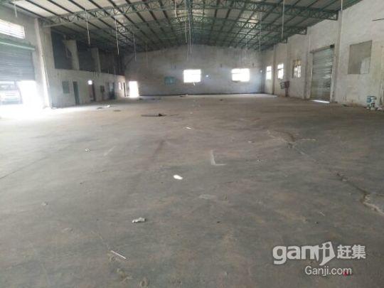 龙岗中心城原房东钢构厂房,1700平方8米高-图(6)