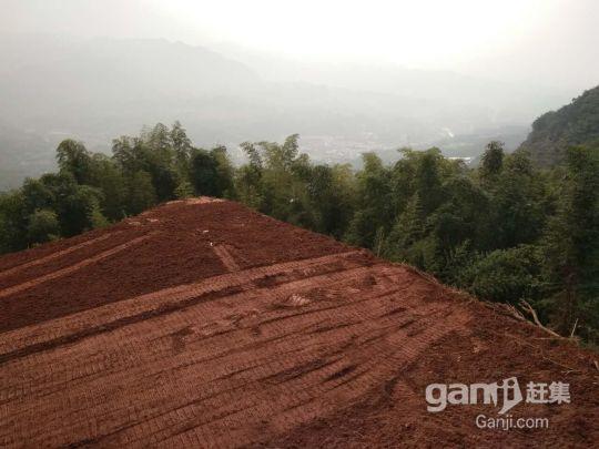 泸州市周边近200亩 综合养殖用地出售-图(6)