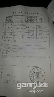 流转东乡县林地3500亩59年48元/亩/年-图(5)