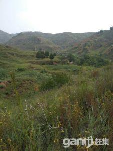 土地可种植养殖放牧建造-图(1)
