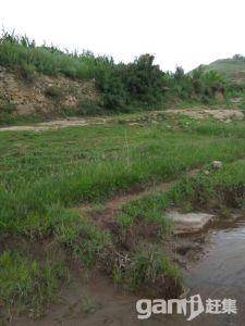 土地可种植养殖放牧建造-图(3)