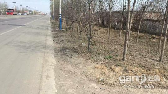 禹州古城镇小集村郑平公路东侧路边8亩独户厂房出租-图(1)