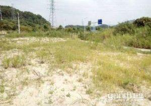 马鞍山红本家居产业园地皮出售(7000平)