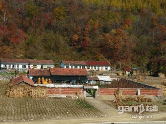 房屋含土地6600平出租或出售-图(1)