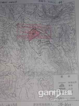 林地土地出售-图(5)