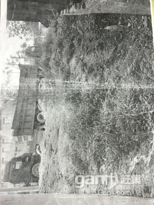 固始县沙河铺政和路北3间门面土地出售-图(1)