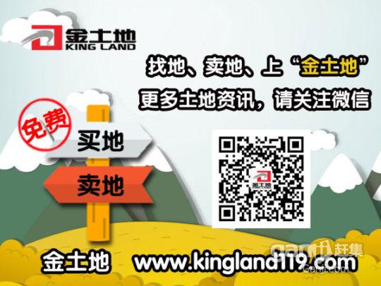 安徽省宣城市广德县87亩山核桃幼林地转让-图(3)