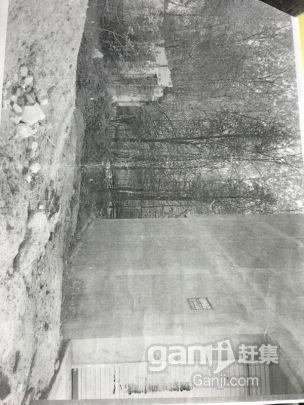 固始县沙河铺政和路北3间门面土地出售-图(2)