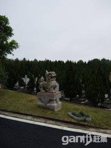 四厦岭 墓地转让-图(2)