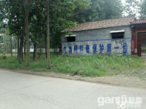 急售宅基地,位置森林公园车管所往西3公里辛庄村,院子大一亩地-图(4)