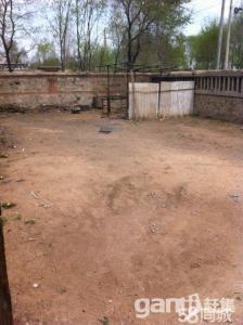 沙后所房屋+院子出售-图(2)