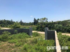 海口市美仁坡乡4000平土地转让-图(2)