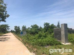 海口市美仁坡乡4000平土地转让-图(4)