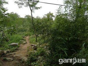 农家山庄转让-图(3)