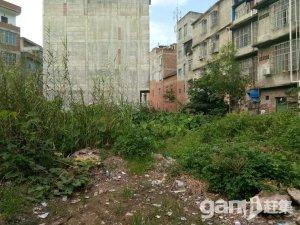 上思县城土地出售-图(2)
