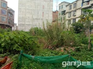 上思县城土地出售-图(5)