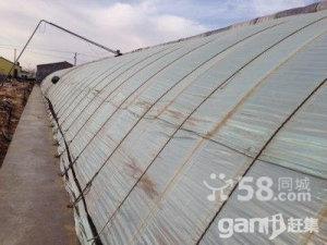 千里山工业园区管委会西50米高效农业-图(2)