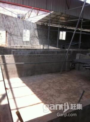 大型养猪场出租,快来租,非常好的环境位子巴适的很-图(7)