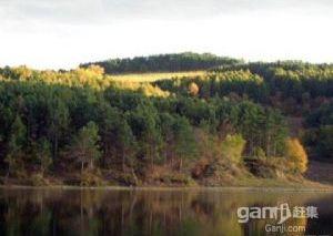哈市最近的度假村水库山林泉水1300亩整体出售