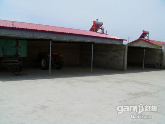 大型养殖场及综合加工厂现出售-图(3)