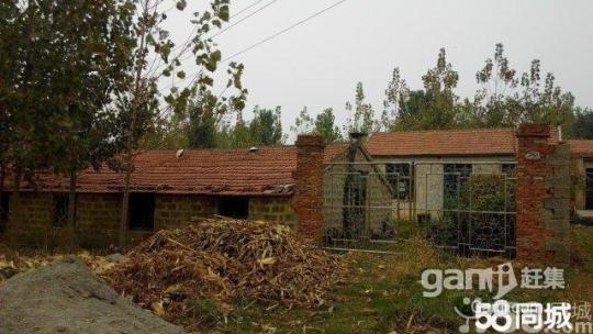 出租3亩土地,带棚带院,水电齐全-图(3)