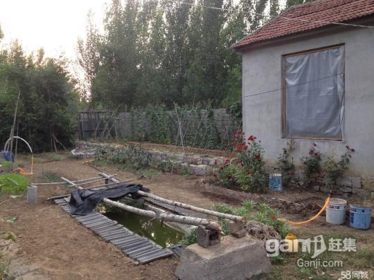 出租3亩土地,带棚带院,水电齐全-图(5)