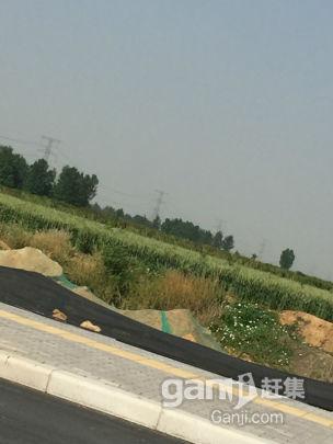20亩土地出租,文峰区光明路南段,紧邻光明路-图(5)