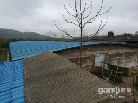 湖南永州珠山镇养猪场可出售或者出租(年出栏2000头)-图(6)