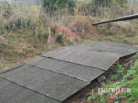 湖南永州珠山镇养猪场可出售或者出租(年出栏2000头)-图(8)