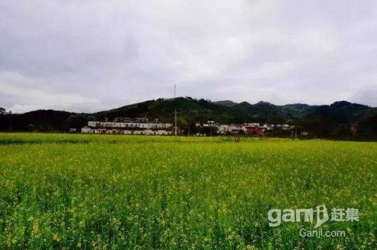 阳山七拱2000亩土地招商超长年期30年-图(5)