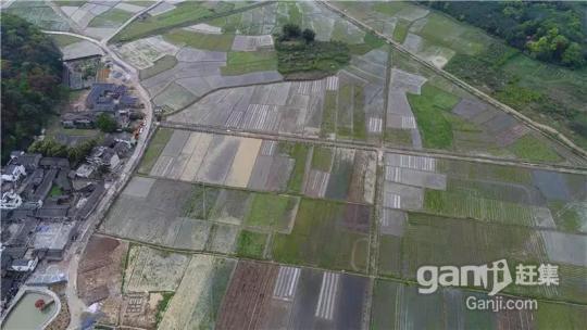 阳山七拱2000亩土地招商超长年期30年-图(8)