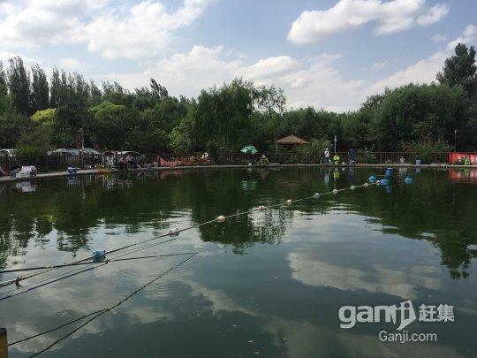 天山-燕尔窝-图(2)