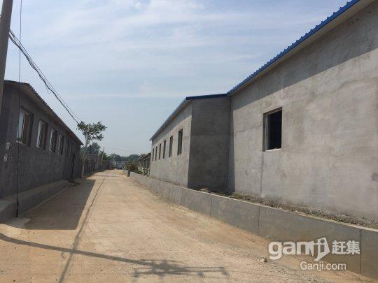 龙港 仓库厂房出租800平米-图(2)