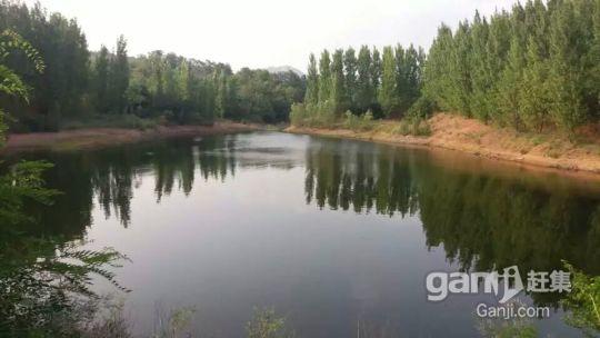 临沂景区边千亩山林诚意转让-图(1)