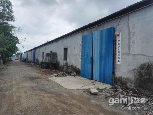 紧急出租椰海大道附近厂房、仓库-图(1)