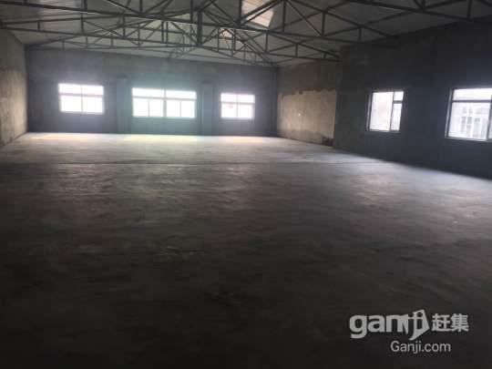 龙港区稻池,厂房出租-图(4)