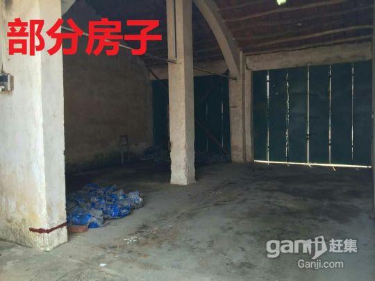 北海福成镇2200平米厂房招租(附今年的图)-图(3)