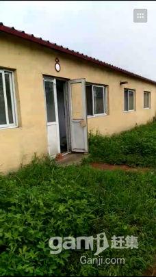 出租土地及房屋,大棚-图(1)