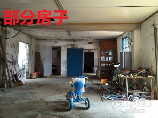 北海福成镇2200平米厂房招租(附今年的图)-图(5)