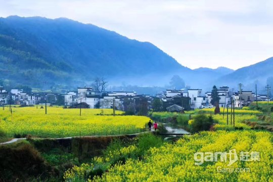 农家乐度假村场地出租,1000平米-图(4)