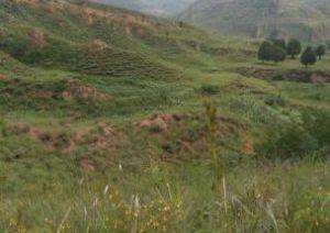 榆社山地,可种植养殖放牧,有泉水