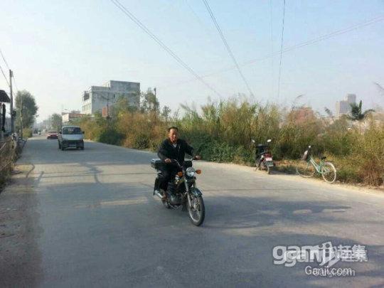 凤塘镇东和村大窖路边约800平方已垫土土地出租-图(2)