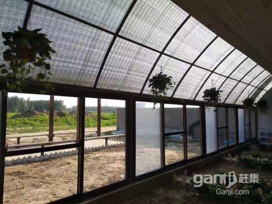 涿州 快乐庄园农场-图(6)