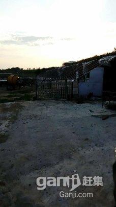 文钟镇南大营子羊场-图(4)