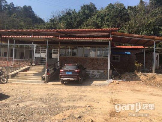 武江 镇泰玩具厂后山有大量地皮出租-图(2)