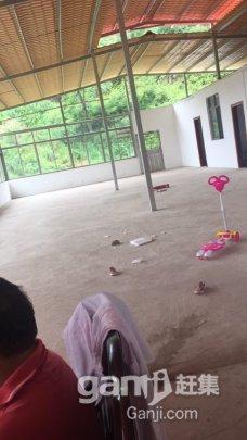 武江 镇泰玩具厂后山有大量地皮出租-图(4)