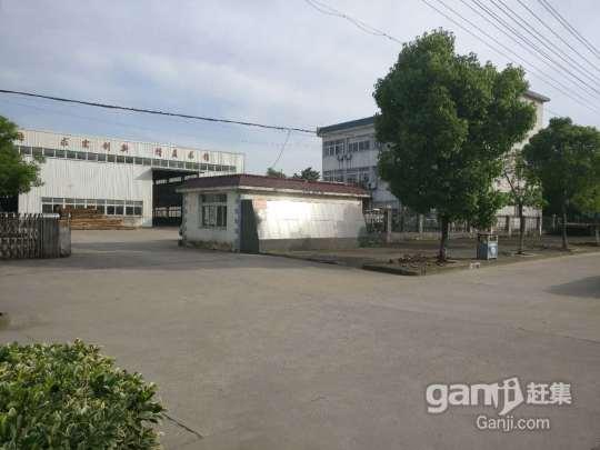 永佳大道沿街 厂房出租1800M-图(5)