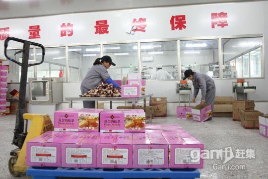 河南万象食品出租生产车间(招募合作伙伴)-图(7)