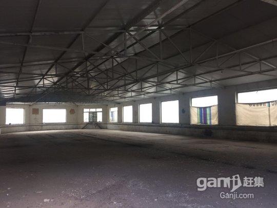 出租大小不等厂房、仓库-图(1)
